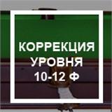 Коррекция уровня (без снятия сукна) 10-12 ф, интернет-магазин товаров для бильярда Play-billiard.ru