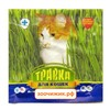 АВЗ травка для кошек (пакет) (30гр)