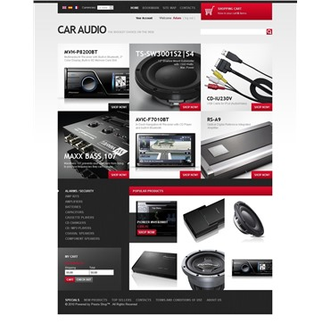 Auto Audio Goods