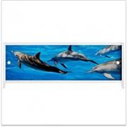 Экран (зашивка) под ванну 1,5 Дельфины
