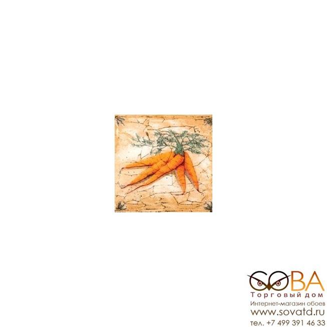 Декор Гурман  морковь (D-496) 16,5х16,5 купить по лучшей цене в интернет магазине стильных обоев Сова ТД. Доставка по Москве, МО и всей России